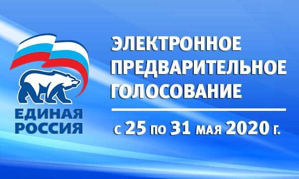 Предварительное голосование на выборы депутатов городской Думы Ростова-на-Дону